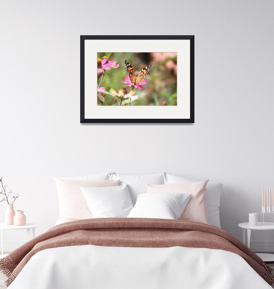 """""""Painted Lady Butterfly 2020 I""""  (2020) by HighlandProductionsLLC"""