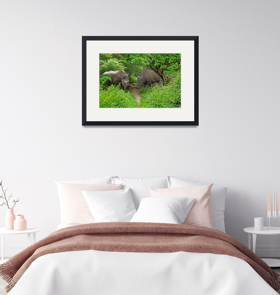 """""""Rhino in the Woods""""  (2007) by loversdream"""