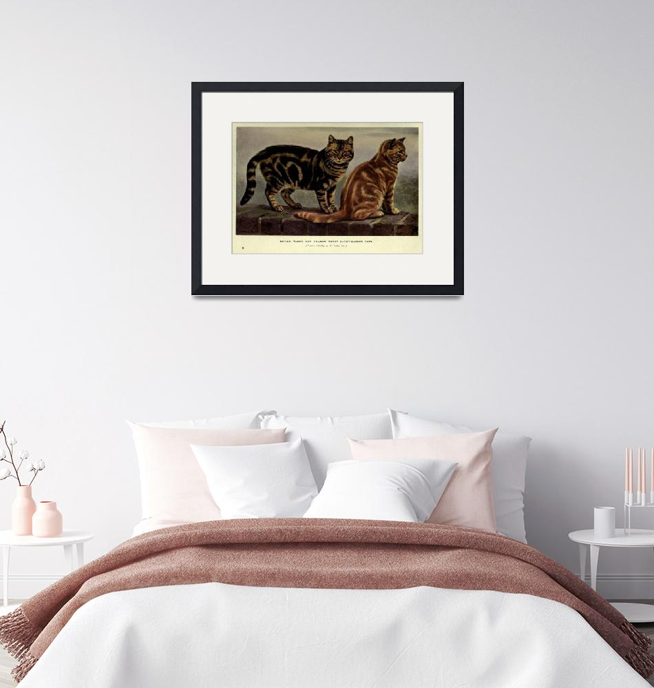 """""""Vintage Short-Haired Tabby Cat Painting (1902)""""  by Alleycatshirts"""