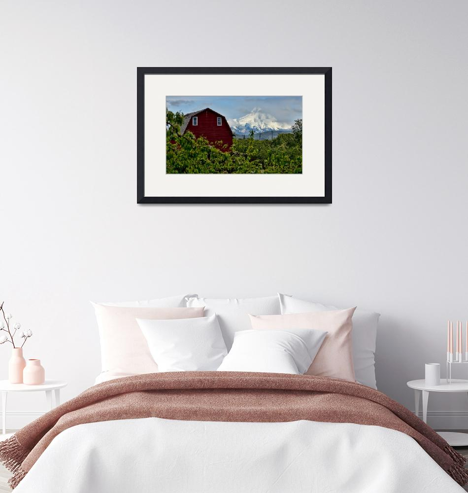 """""""The Red Barn and Mt. Hood""""  (2014) by boppintheblues"""