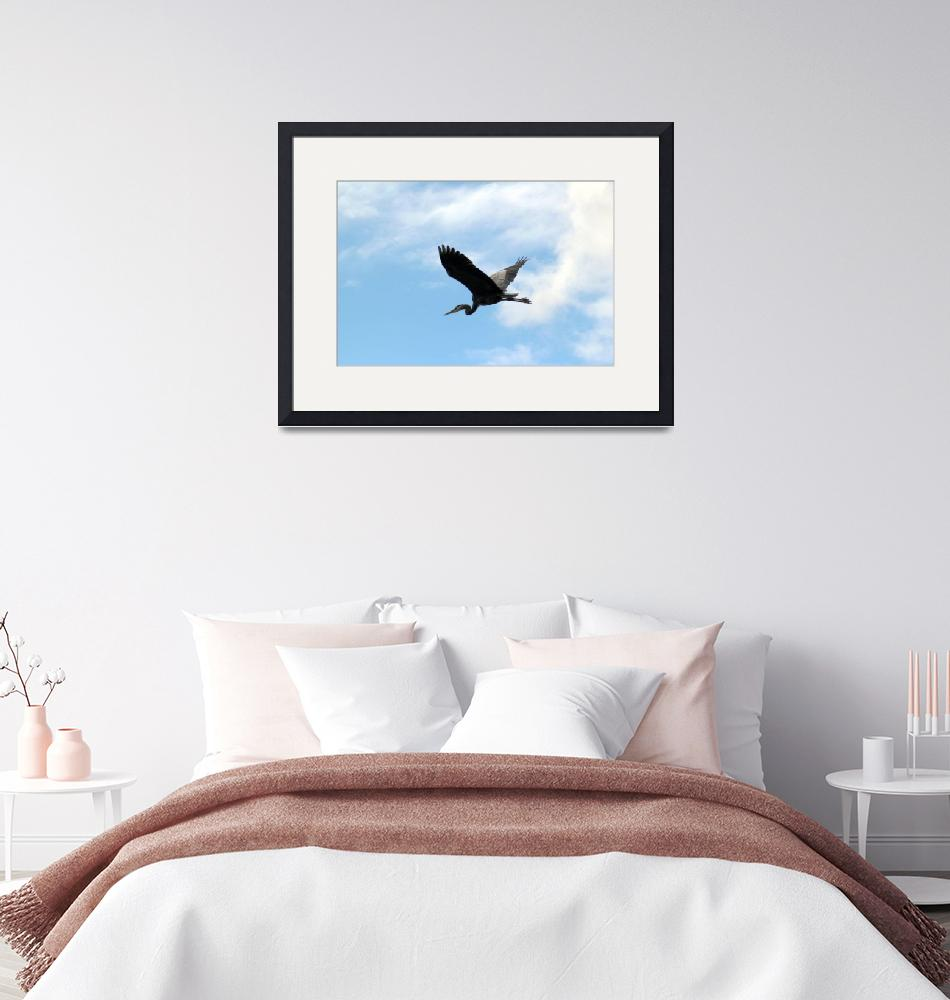 """""""Great Blue Heron Flying by Clouds at Trojan Pond""""  (2013) by dlmtleArt"""
