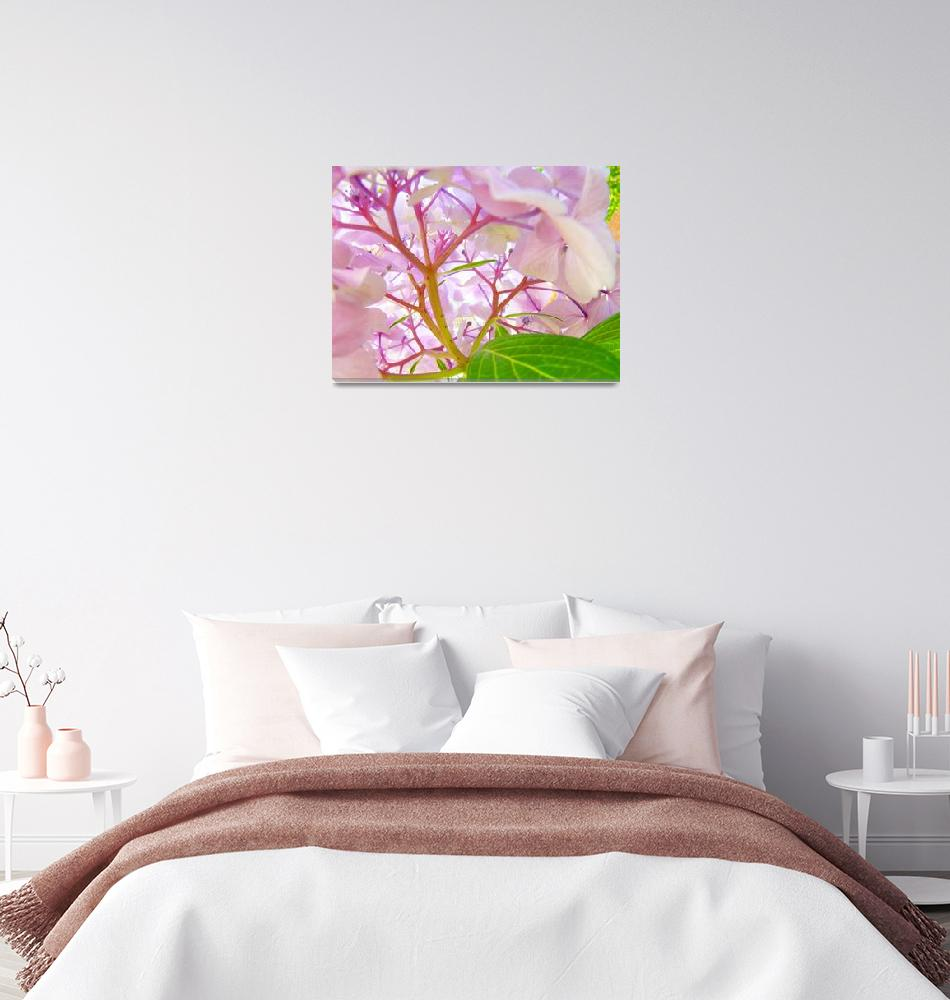 """""""Hydrangea Art Prints Pink Purple Hydrangea Flowers""""  (2009) by BasleeTroutman"""