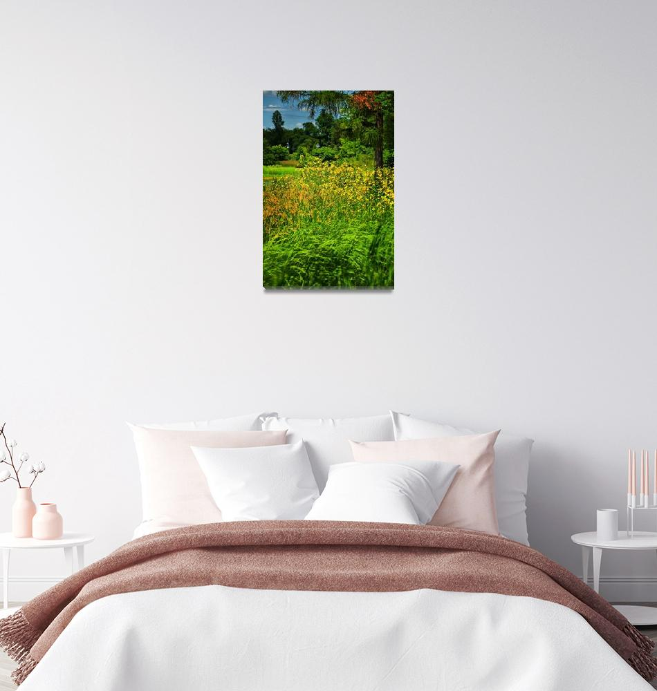 """""""Vibrant field of wildflowers""""  by PositiveImage"""