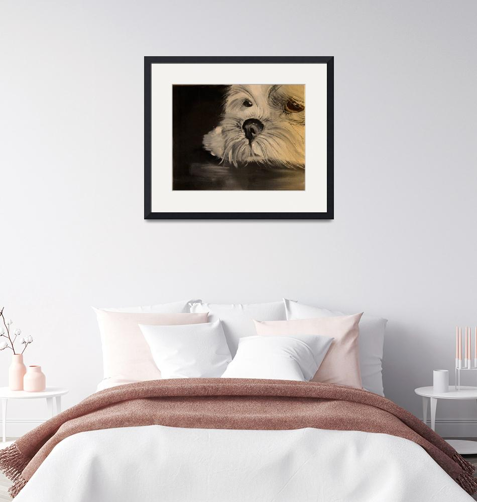 """""""IK-Lhasa Apso1""""  by RussBaker"""