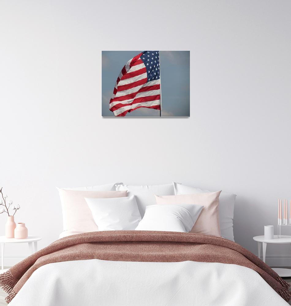 """American Flag""  by ESNielsen"