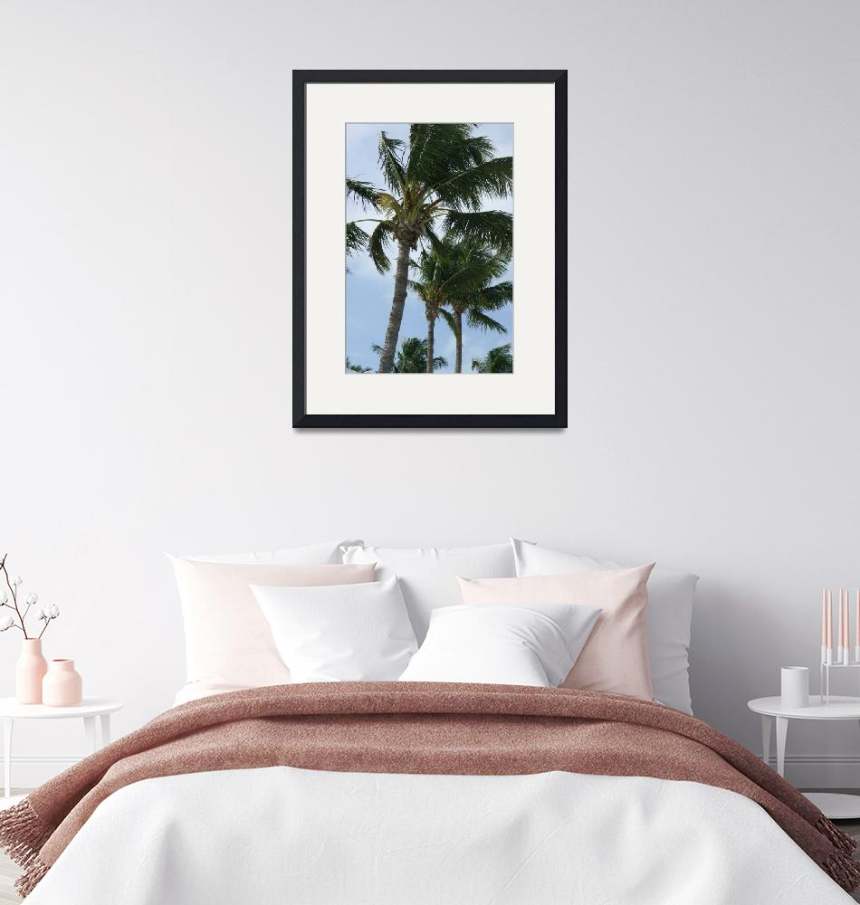 """""""Palm Trees""""  by victoriazeoli"""