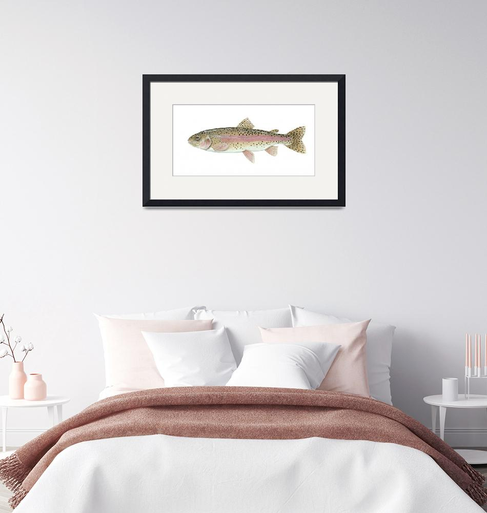 """""""Illustration of a rainbow trout""""  by stocktrekimages"""