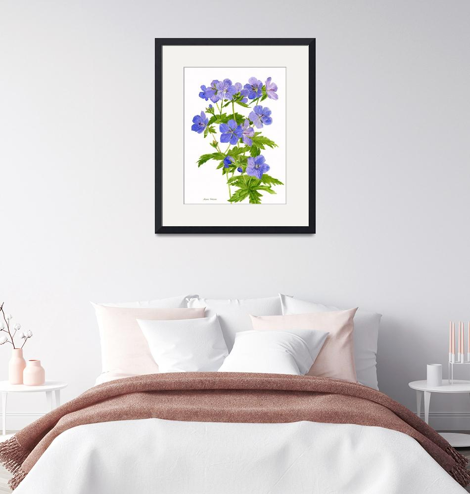 """Cranes Bill, Wild Geranium, illustration""  (2010) by Pacific-NW-Watercolors"