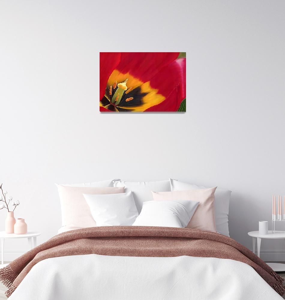 """The red tulip""  (2009) by heuscherartnoosa"