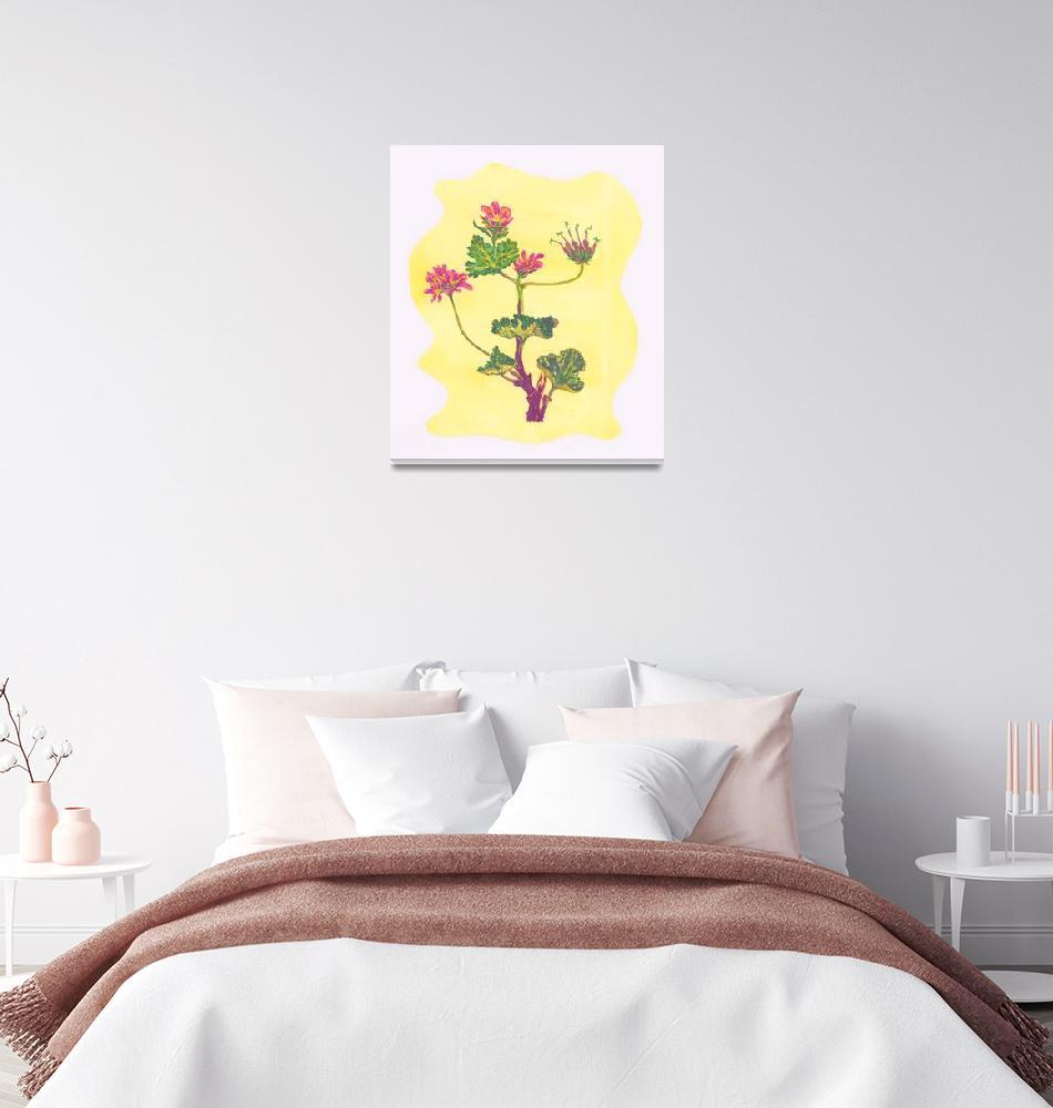 """ROSE GERANIUM (Pelargonium Graveolens)""  (2008) by EveHoward"