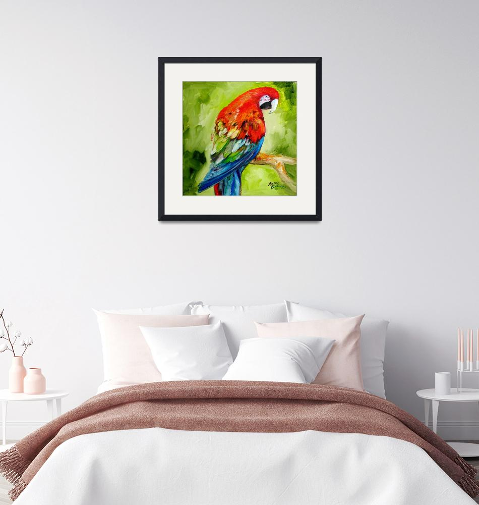 """""""MACAW TROPICAL""""  (2010) by MBaldwinFineArt2006"""
