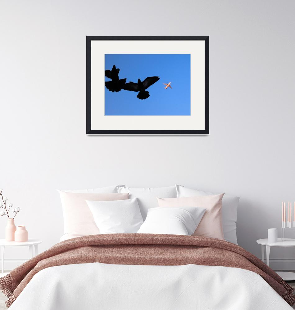 """""""flying together""""  (2018) by I_Vid"""