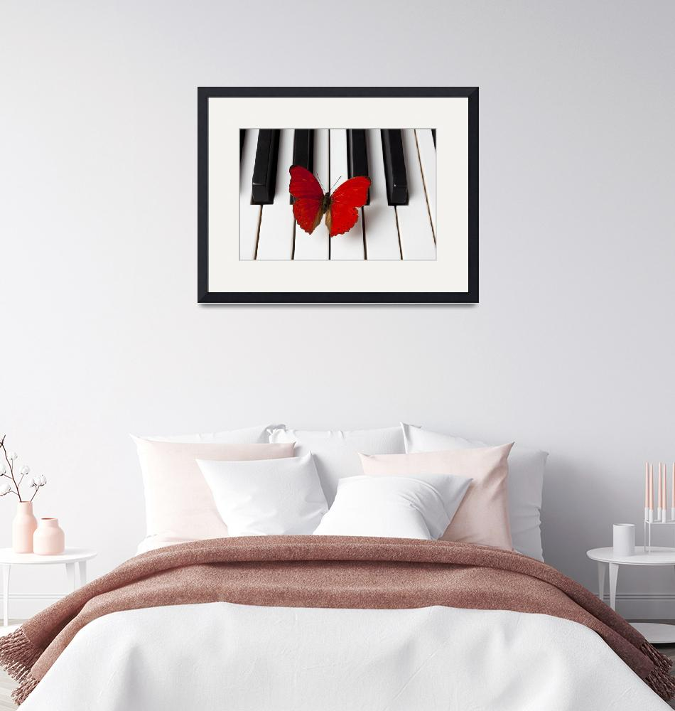 """Red Butterfly On Piano Keys""  (2012) by photogarry"