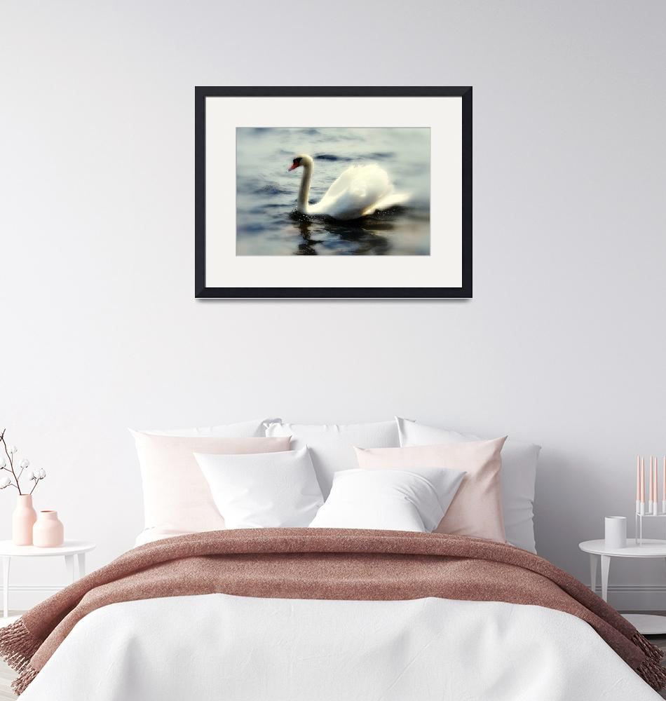 """""""Swan""""  (2008) by mmersdesign"""