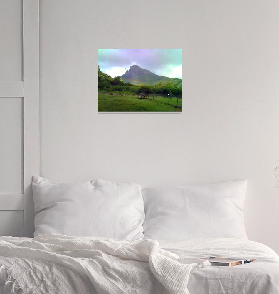 """Zebra Striped Rainbow""  (2011) by dominicdesigns"
