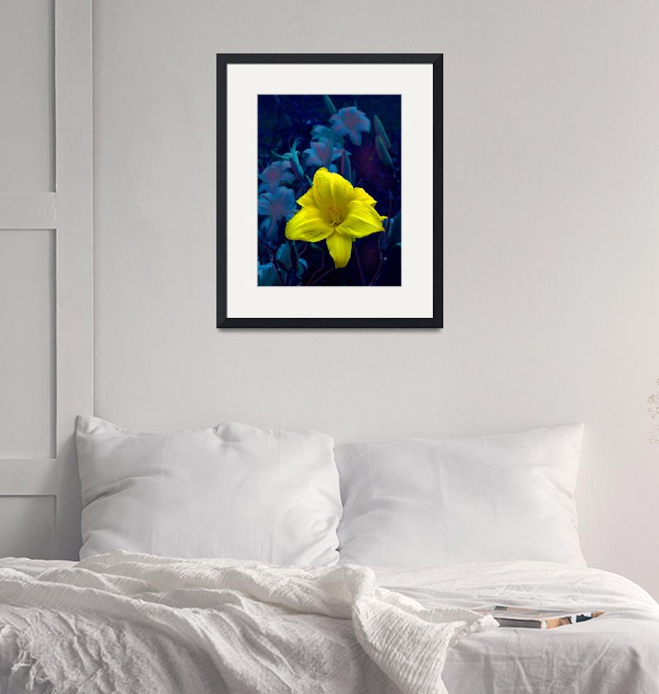 """""""Day Lily In Blue Night""""  (2011) by eGiclee"""