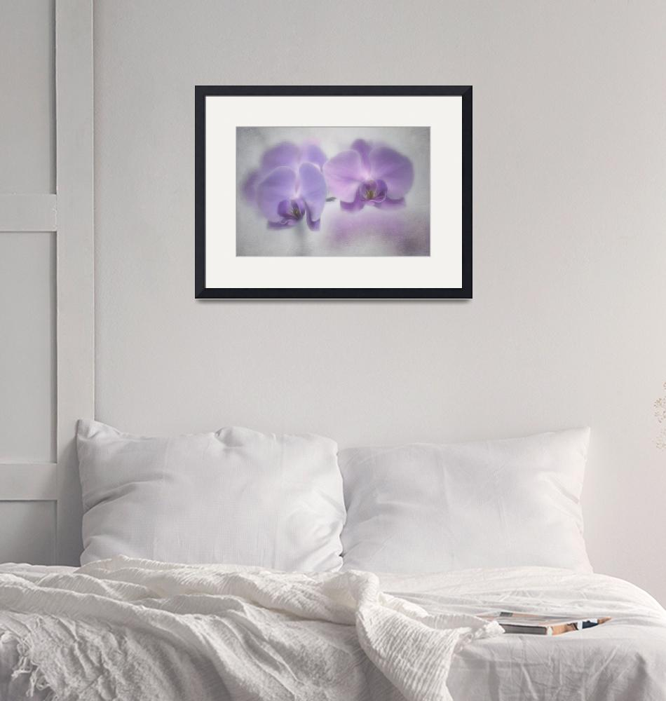 """""""Soft Orchids""""  (2020) by Piri"""