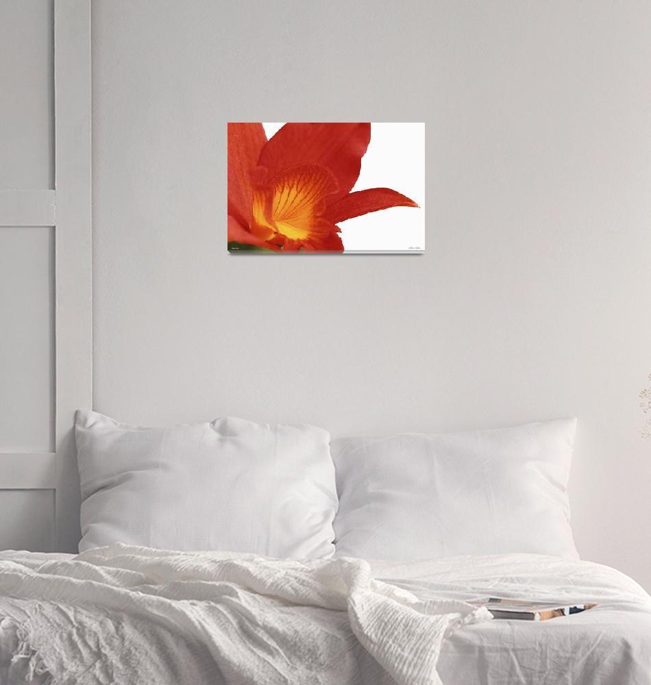 """F164-1 Orange Charm""  (2014) by Williamcastner"