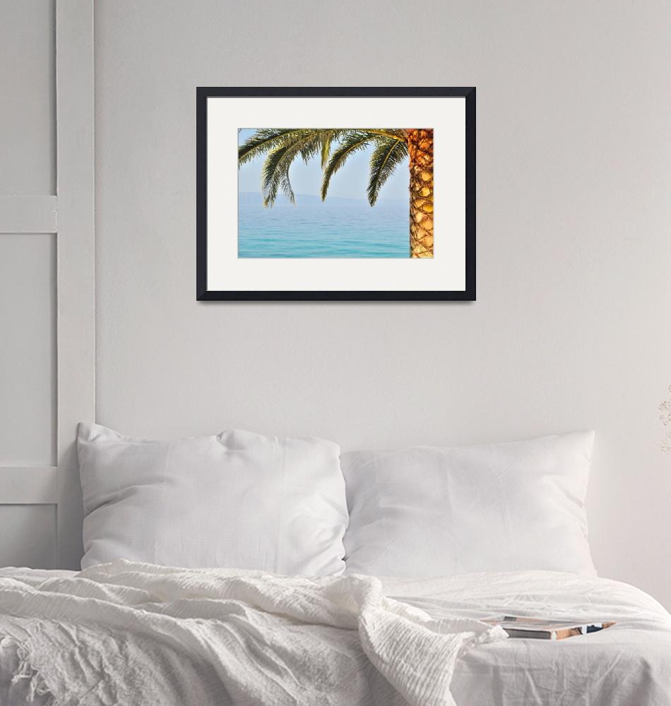 """""""Palm tree with sea in background""""  (2013) by creative_photography"""