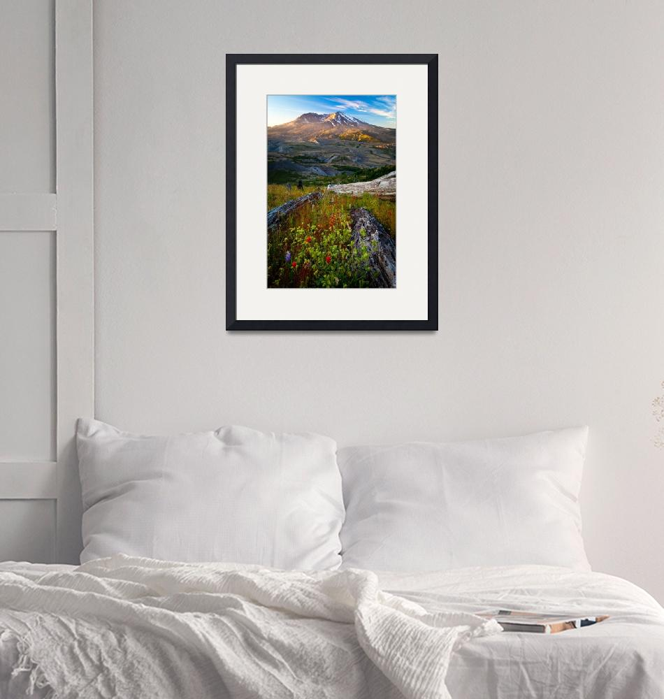 """""""Mount St Helens Dawn"""" (2011) by Inge-Johnsson"""