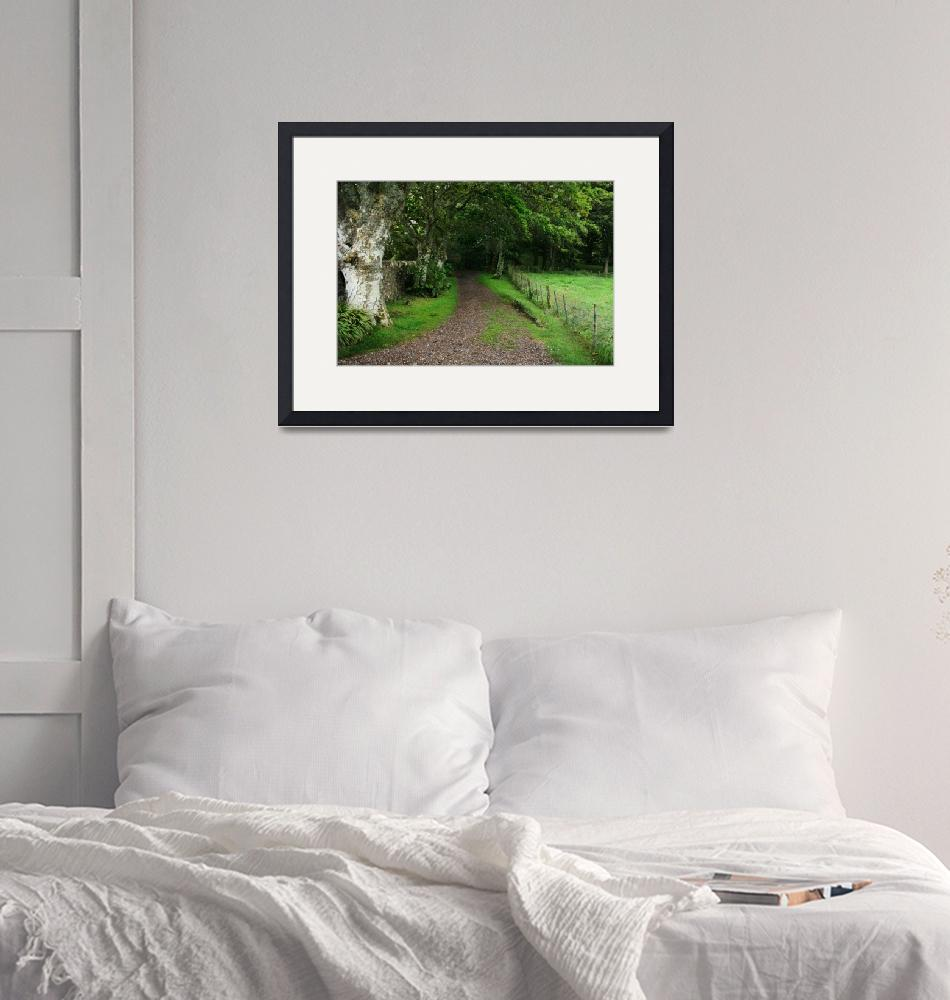 """""""Country Lane""""  (2009) by Travelerscout"""