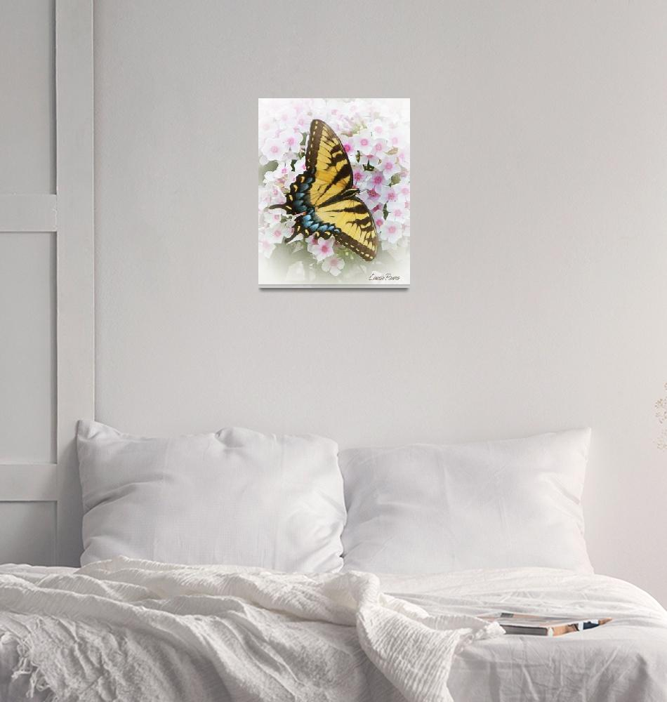 """""""swallowtail butterfly""""  (2013) by LouiseReeves"""