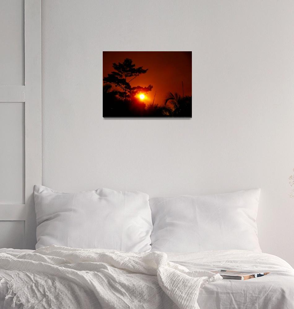 """""""sunset""""  (2012) by M-photos"""