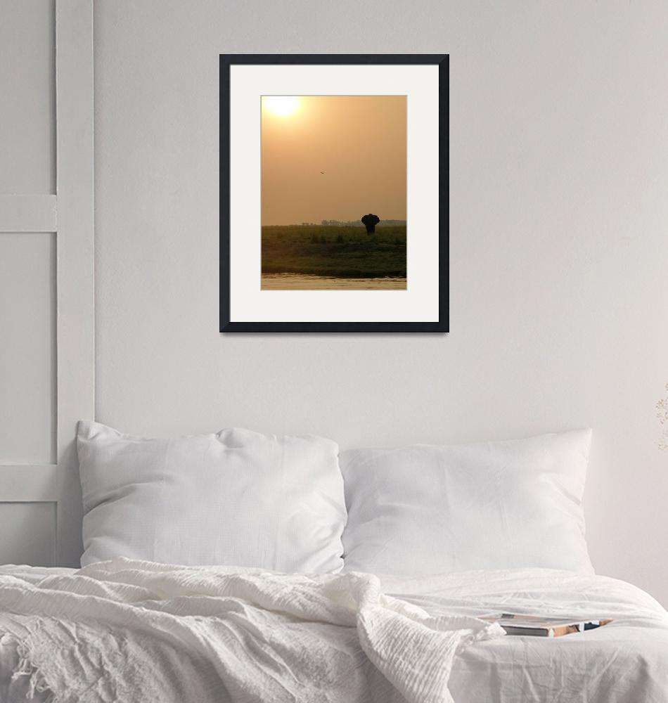 """""""Sunset on the Chobe River""""  (2010) by JamesBWells"""