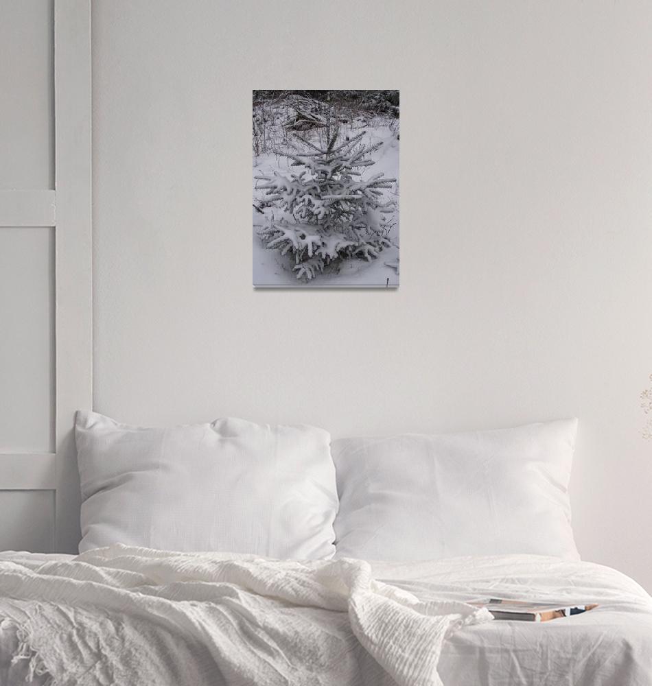 """Winter 2""  (2012) by Jurchx"