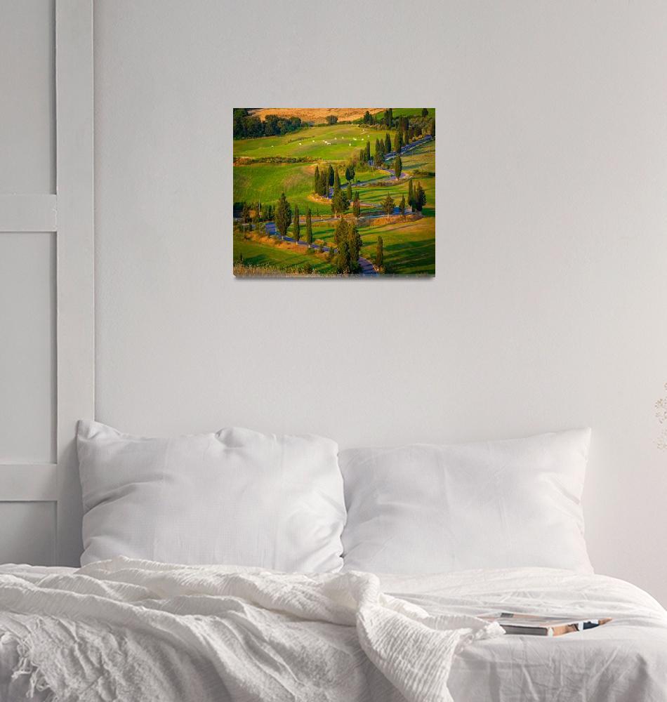 """Toscana Strada""  (2010) by Inge-Johnsson"