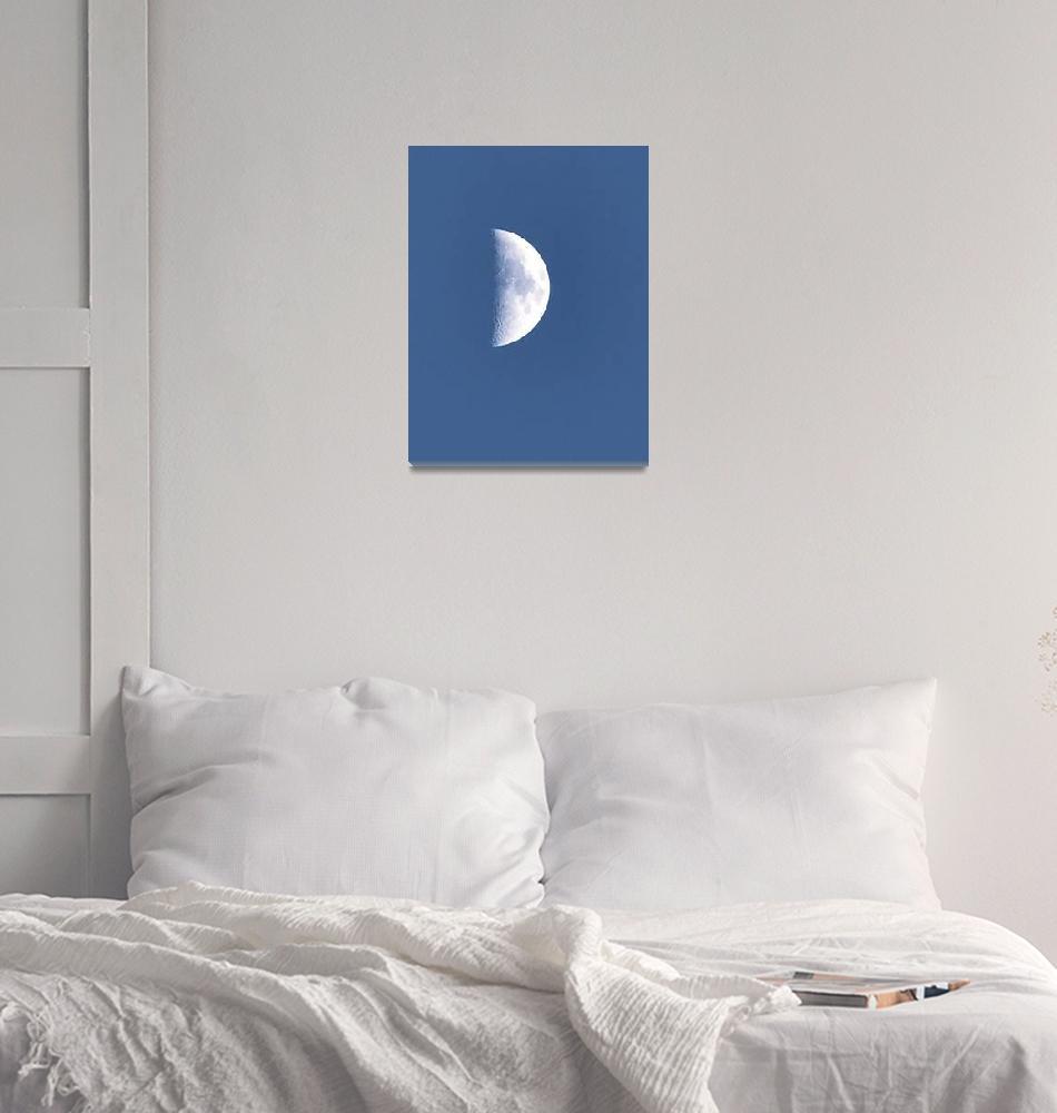 """""""Early Moon""""  by IrishFox"""