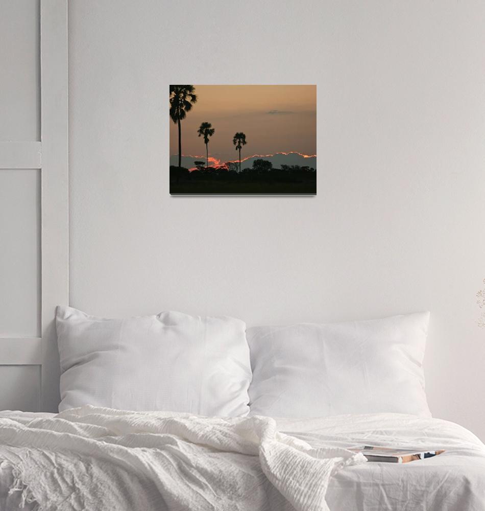 """""""African Sunset""""  by KarenZukRosenblatt"""