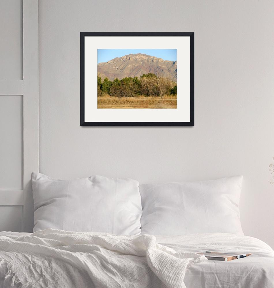 """""""South Franklin Mountain 2""""  (2007) by MarksClickArt"""