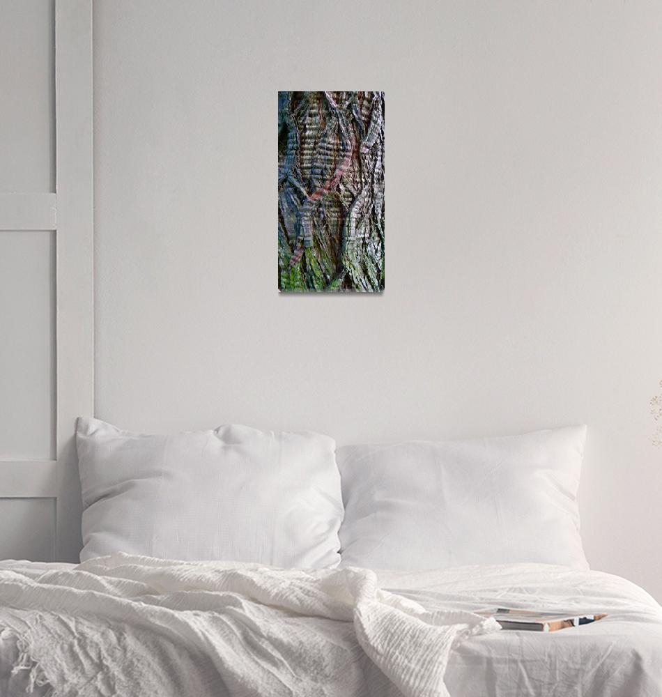 """rippled cypress bark""  by stephenschiller"