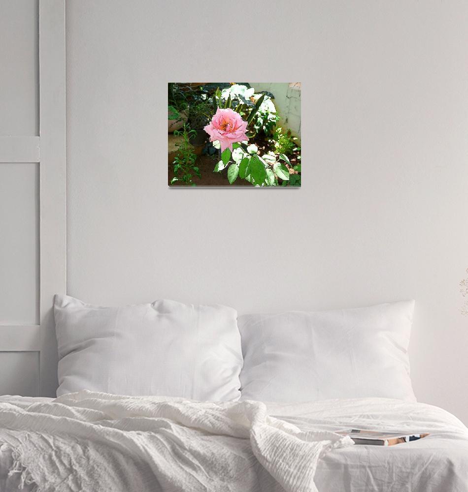 """The Queen of my Garden""  (2010) by Caribbean-Digital-Art"