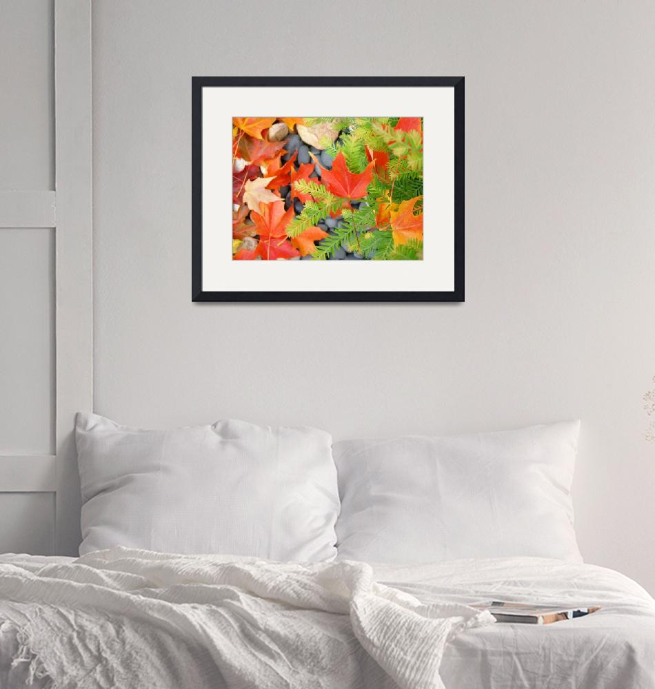 """""""Fall Leaves Red Orange Autumn Tree leaves prints""""  (2010) by BasleeTroutman"""