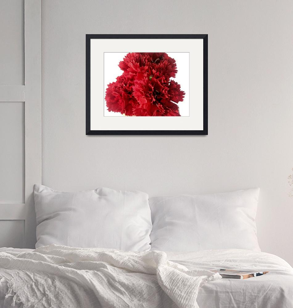 """""""Red Carnations""""  (2009) by Alvimann"""