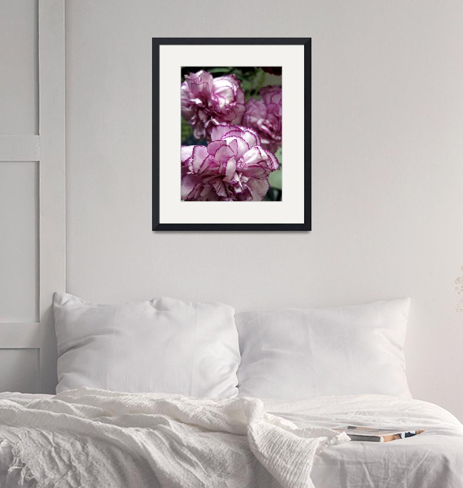 """""""Pink and White Carnations""""  (2009) by Alvimann"""