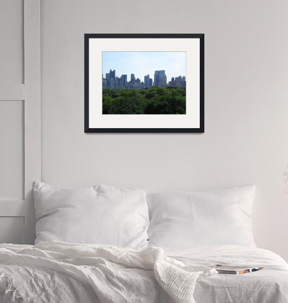 """Central Park & Manhattan from MET Museum""  (2008) by whateverdesign"