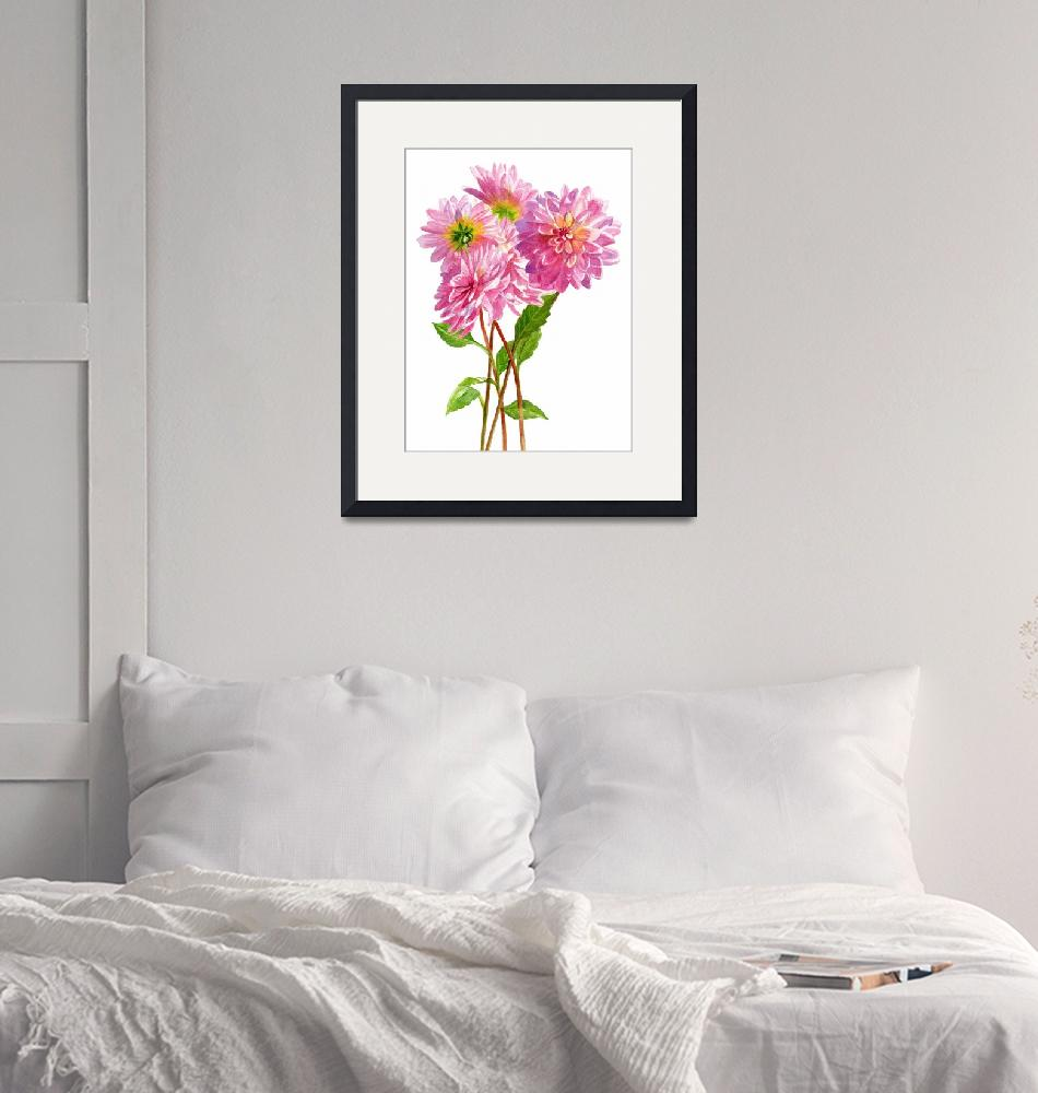 """Pink dahlias white background""  (2016) by Pacific-NW-Watercolors"