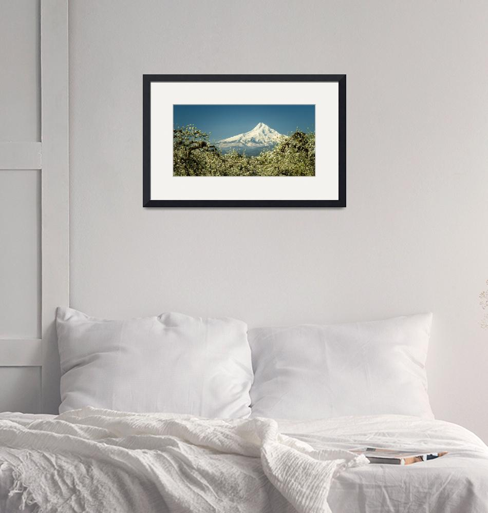 """""""Mt. Hood in Blossoms""""  (2018) by boppintheblues"""