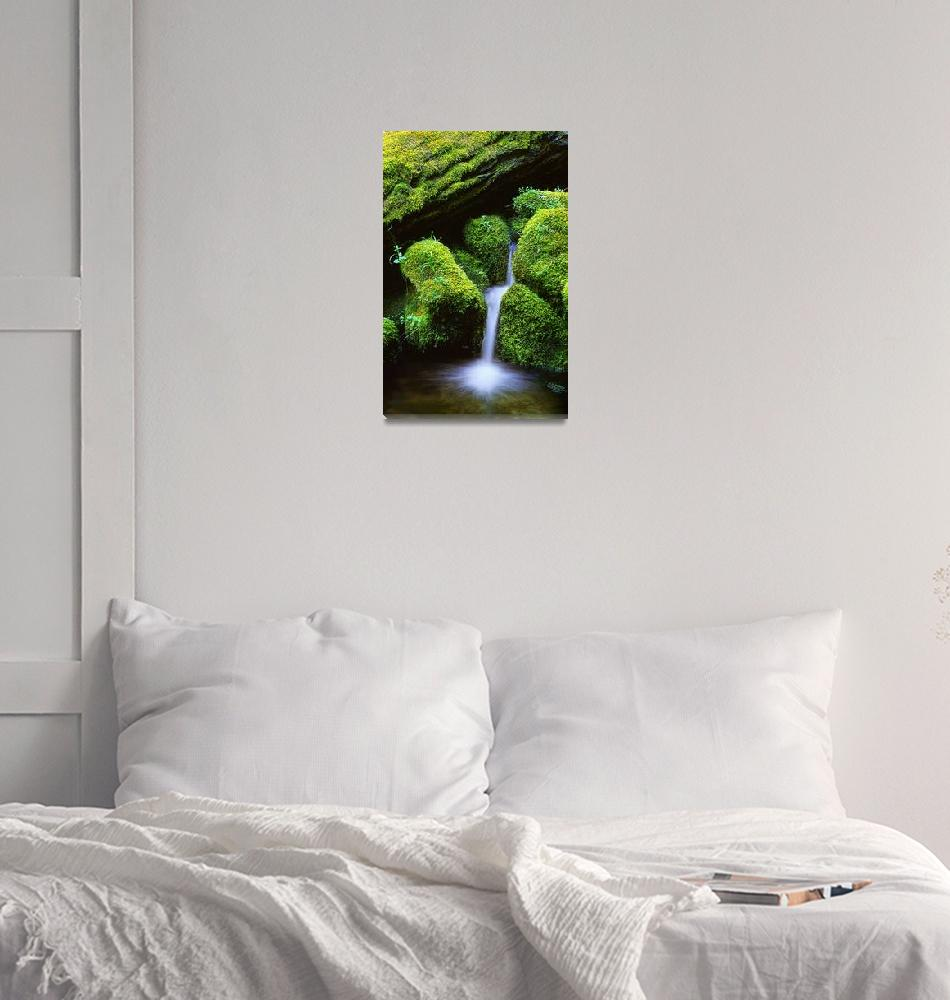 """Mossy Cascade""  (2002) by Inge-Johnsson"