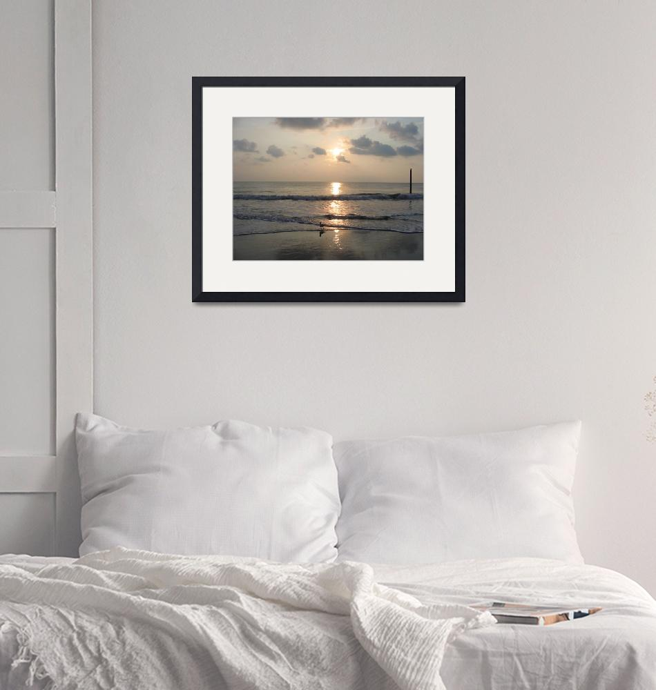 """""""Seagull at Sunrise (Landscape)""""  by ConnersCreations"""