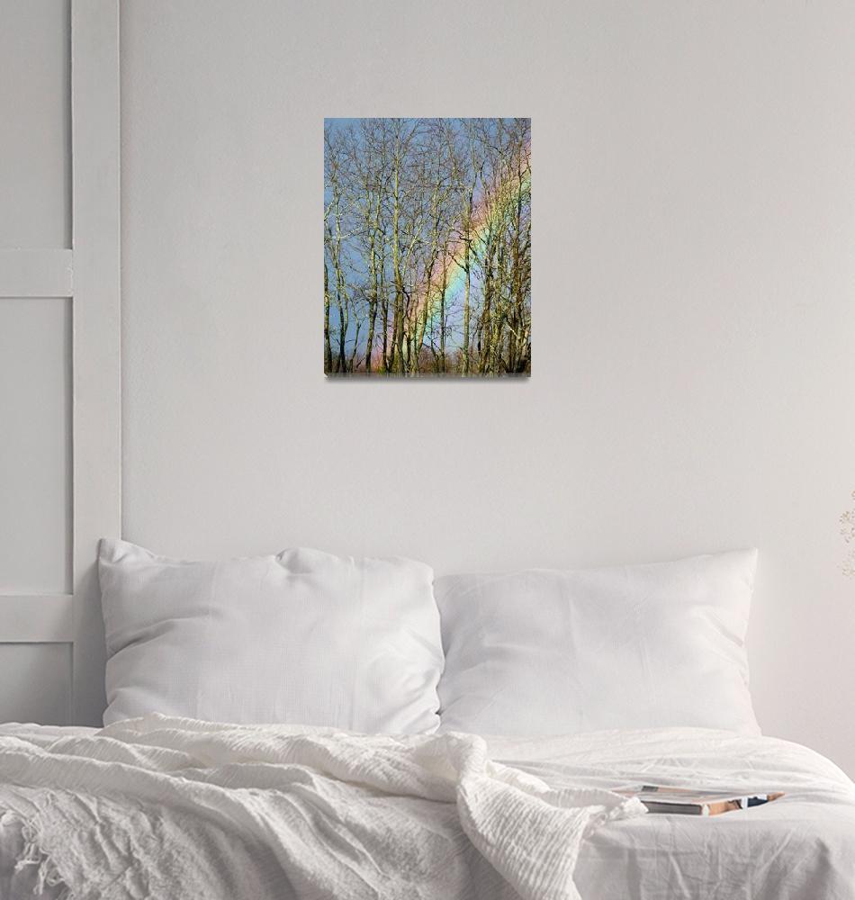 """Rainbow Hiding Behind The Trees""  by foxvox"