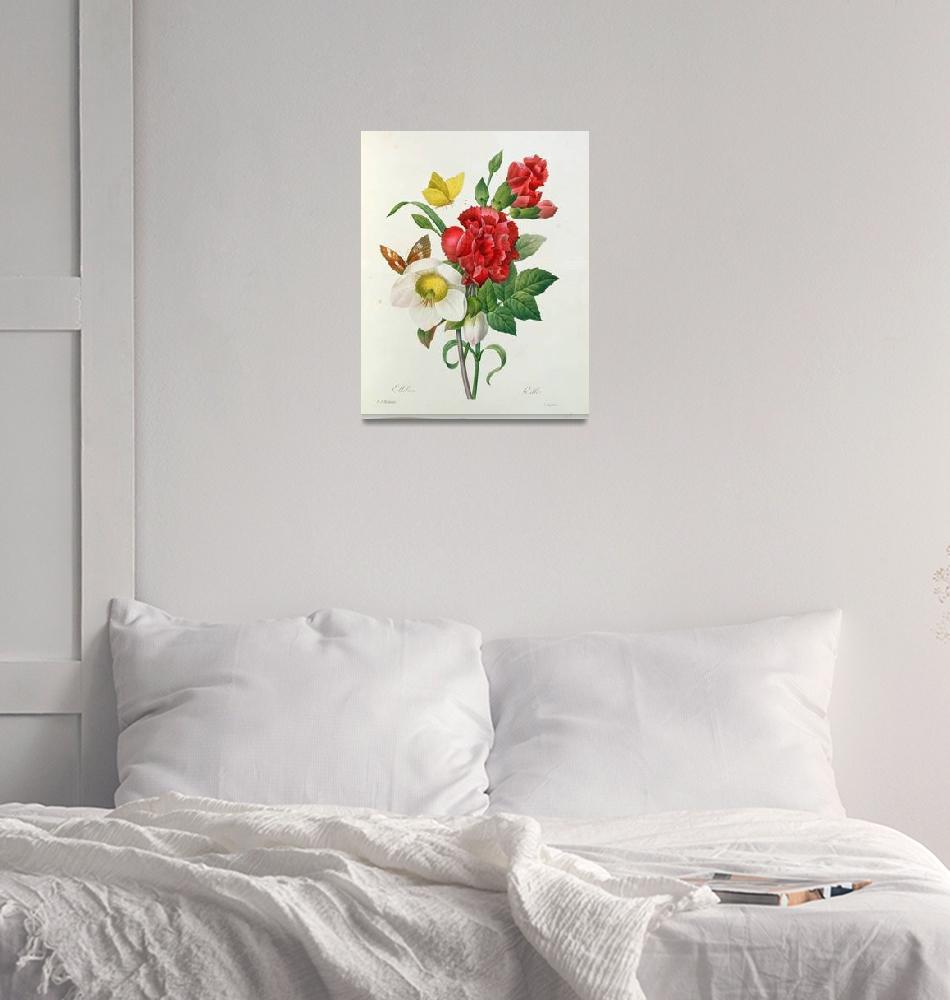 """Christmas Rose, Helleborus niger and Red Carnation""  by fineartmasters"