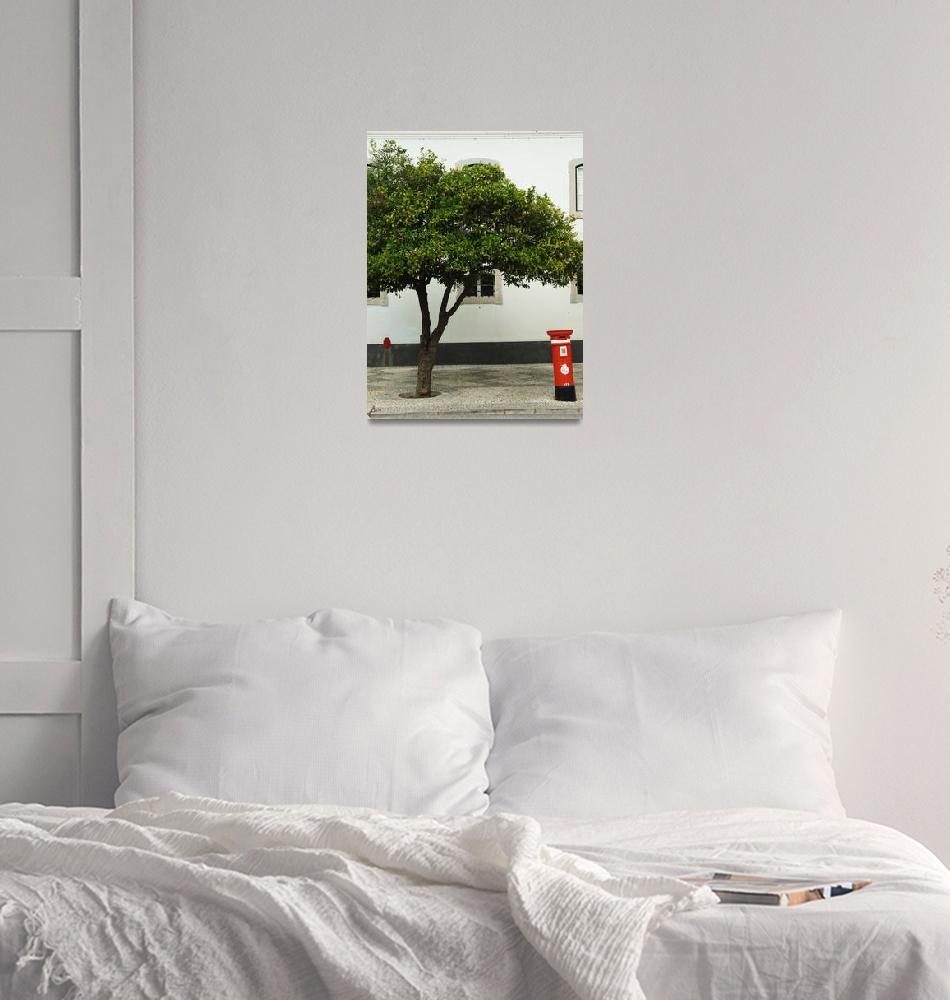 """Orange Tree and Postbox - Faro""  (2008) by laptoppingpong"