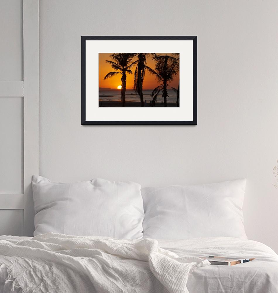 """""""Silhouetted Palm Trees at Sunset""""  (2007) by dennisflood"""