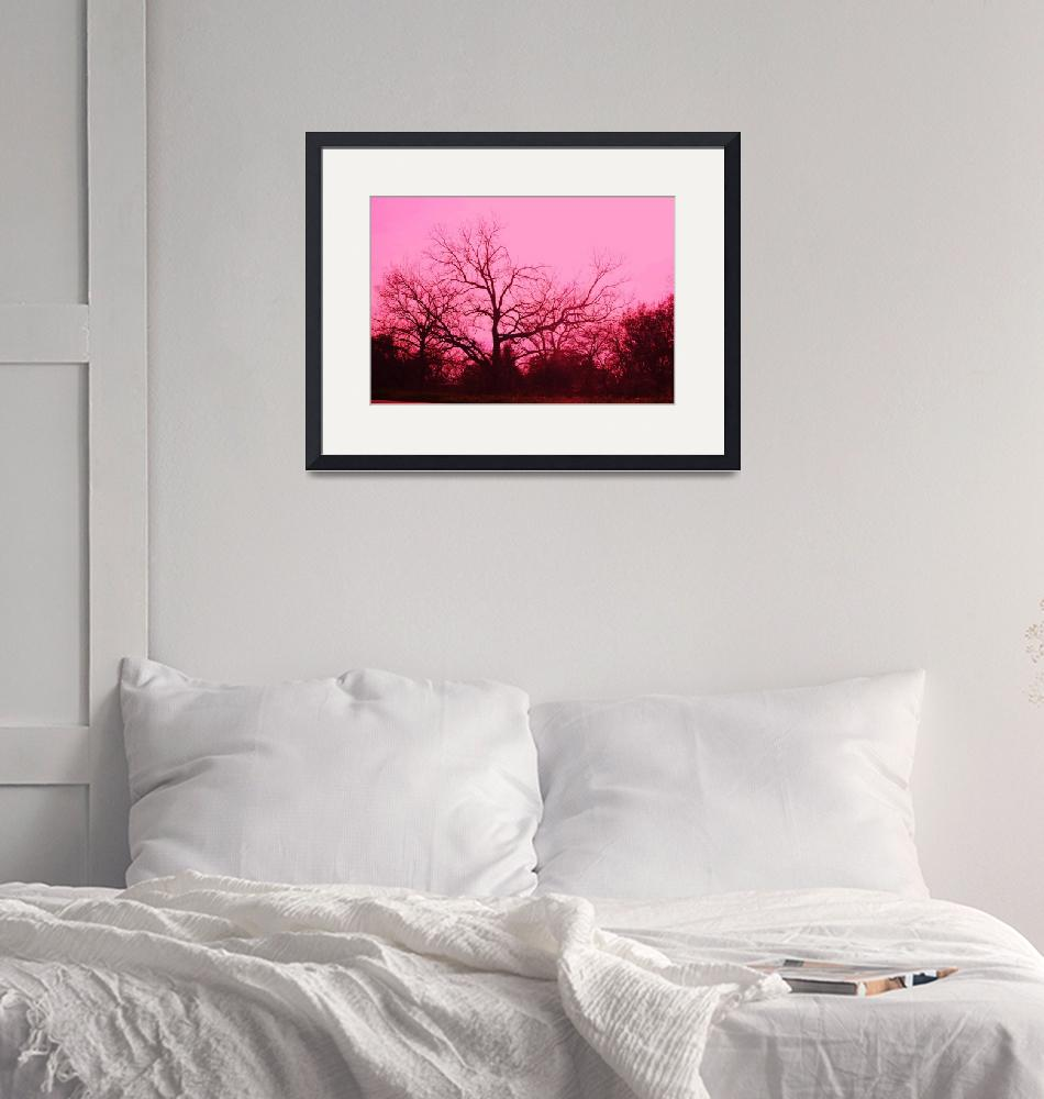 """""""Ponderously Pink3""""  (2012) by DigitalCreations"""