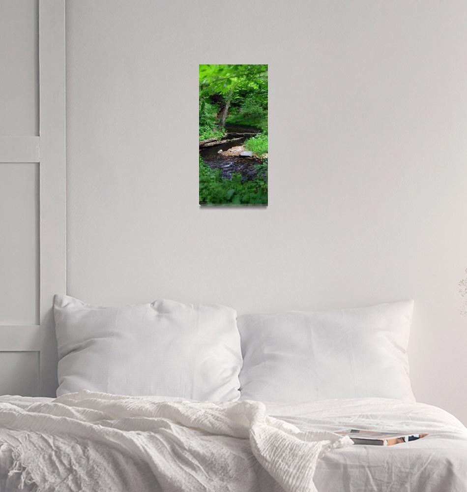 """Meandering Forest Stream""  by lyndazurn"