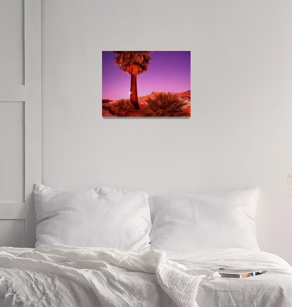 """""""""""Desert Dawn Moon Set""""""""  (2002) by Uhlinger"""